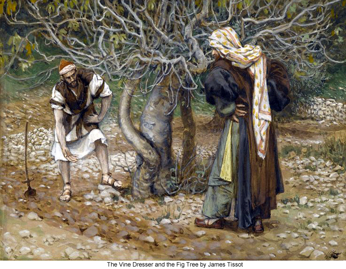 James_Tissot_The_Vine_Dresser_and_the_Fig_Tree_700